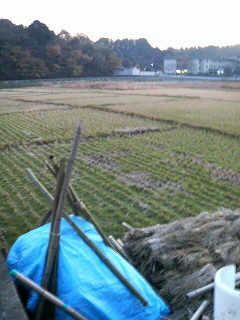 地球チャイルドの畑&<br />  田