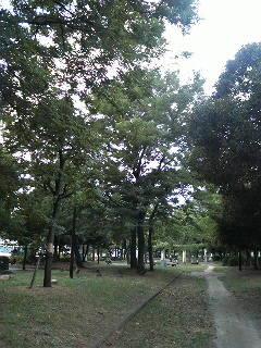 都心の森をガイド