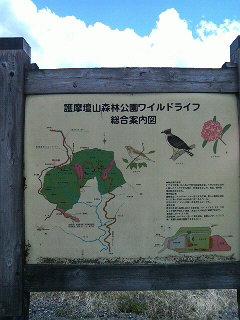 高野山と龍神温泉