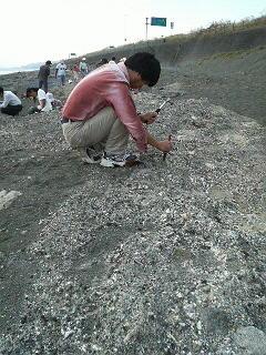 綾瀬市化石掘りイベント