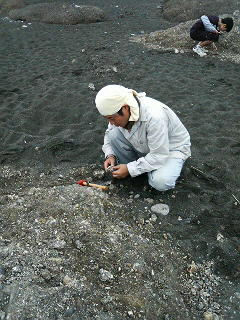 地球チャイルドの化石掘り